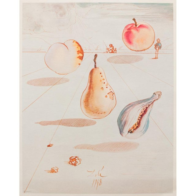 """Original period large lithograph after original """"Fruits"""" watercolor by Salvador Dali. This is one of six lithographs which..."""