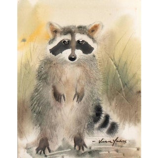 Vern Yadon Raccoon Cub 1981 For Sale