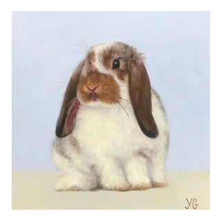 Realist Original Oil Bunny Painting, Stella For Sale