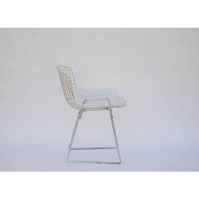 Mid-Century Modern Set of Four Original Wire Chairs by Harry Bertoia for Knoll For Sale - Image 3 of 7