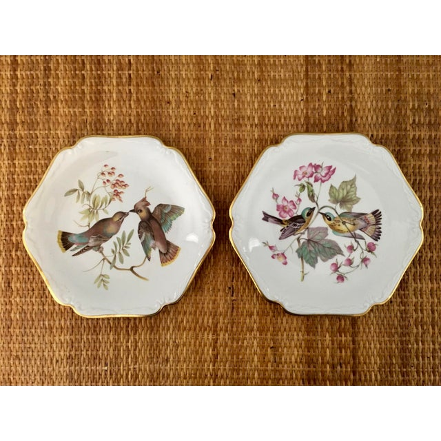 Green German Floral Bird Plates - a Pair For Sale - Image 8 of 8