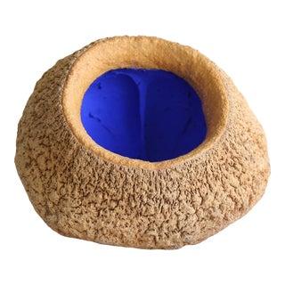 Sapucaia Blue No. 2 Seed Pod For Sale