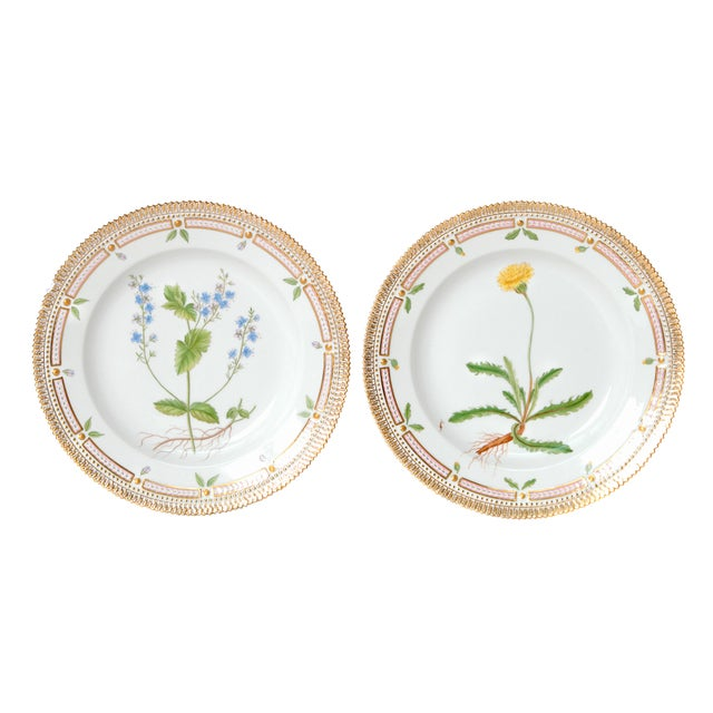 Pair of Flora Danica Plates by Royal Copenhagen #20/3573 and #20/3549 For Sale - Image 13 of 13