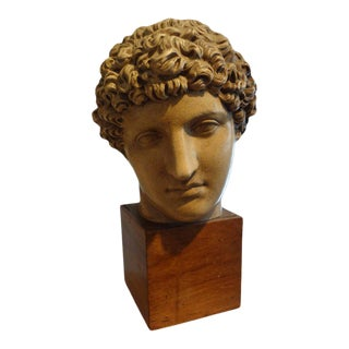 Antique Italian Terracotta Bust on a Wood Base For Sale