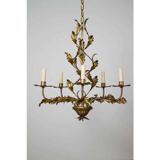 Gold Leaf Italian Five Light Gold Leaf Chandelier For Sale - Image 7 of 7