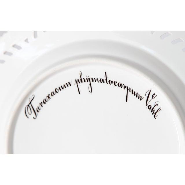 Royal Copenhagen Flora Danica Pierced Plates #20/3554 For Sale - Image 9 of 13