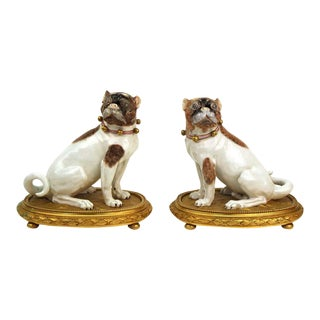 Dresden Porcelain Pug Dog Figures on Gilt Bronze Bases - a Pair For Sale