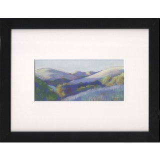 Wildcat Canyon Park in Northern California Contemporary Drawing For Sale