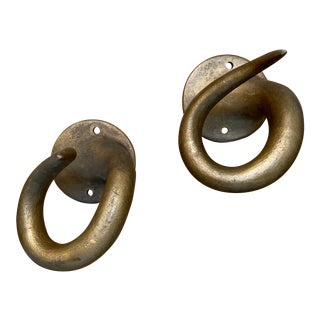Mid 20th Century Resin Horn Hooks - a Pair For Sale