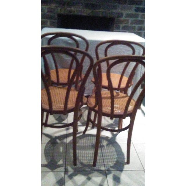 Vintage Thonet Bentwood Cane Chairs - 4 - Image 8 of 11