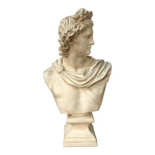 Vintage Mid Century Apollo Belvedere Plaster Bust For Sale