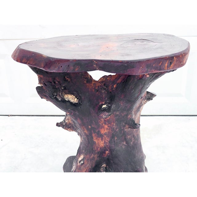 Brown Vintage Tree Slab Side Table or Pedestal For Sale - Image 8 of 13