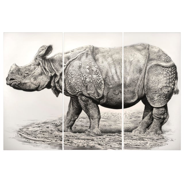 "Contemporary Contemporary ""Indian Rhino"" Rick Shaefer Charcoal Print For Sale - Image 3 of 3"