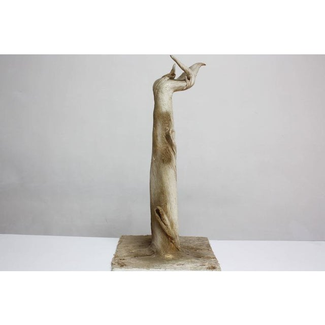 Petrified and Painted Tree Branch 'Hand' Sculpture on Board For Sale In New York - Image 6 of 9