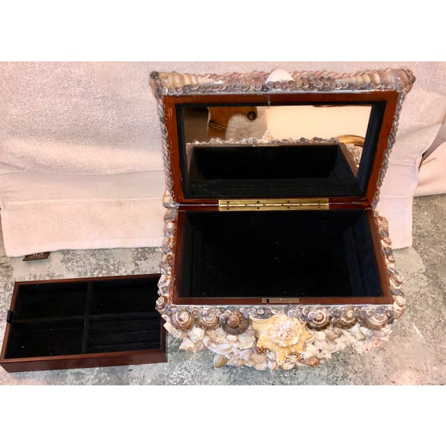 Shell Encrusted Lidded Box For Sale - Image 9 of 10