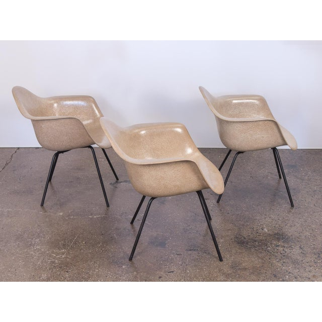 Contemporary Second Generation Greige Eames Armshell Chair For Sale - Image 3 of 11