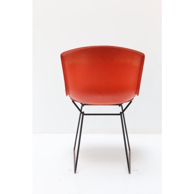 Knoll Knoll Bertoia Fiberglass Side Chair Red-Orange For Sale - Image 4 of 11