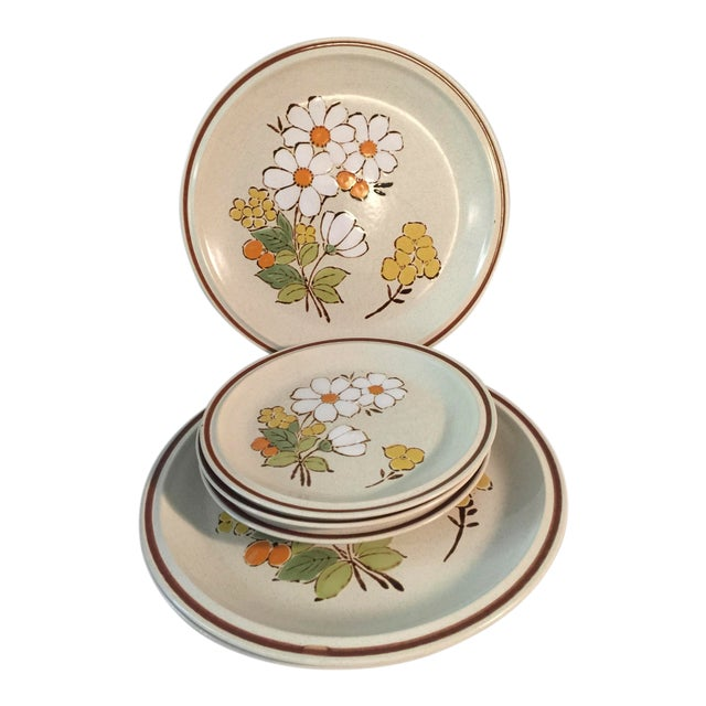 1970s Hand Painted 70's Hearthside Stoneware - Set of 6 For Sale