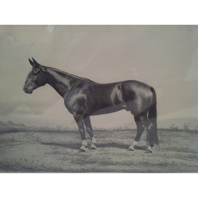 Joe Patchen Original Print Circa 1895 For Sale - Image 4 of 9