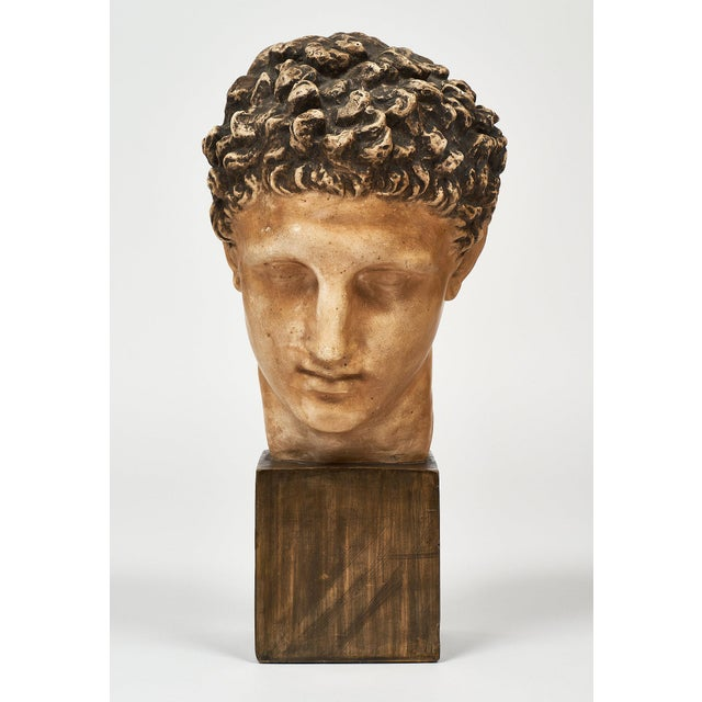 French Vintage Hermes Bust For Sale - Image 4 of 12