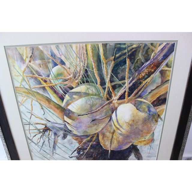 """Vintage Barbara Shipman Watercolor Painting """"Lots of Coconuts"""" For Sale - Image 9 of 13"""
