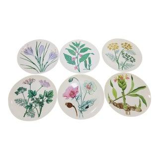 "Modern Floral Design Horchow 7.75""d Plates S /6 For Sale"