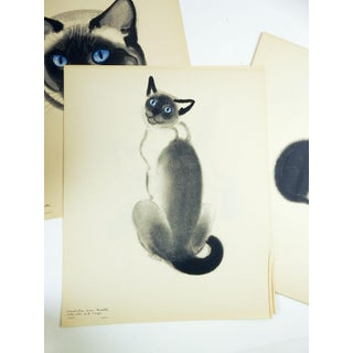 Cats: A Portfolio of Prints by Clare Turlay Newberry Preview