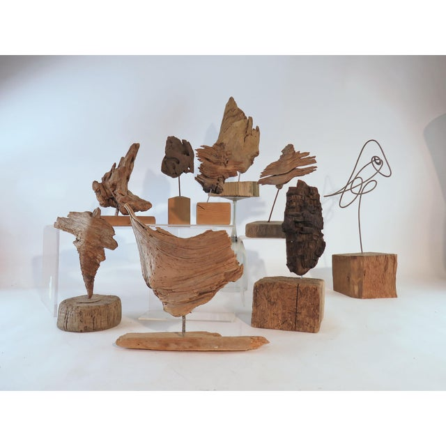 Collection of Abstract Driftwood Sculptures, Gloucester, Ma, Circa 1960s-1970s - Set of 9 For Sale - Image 13 of 13