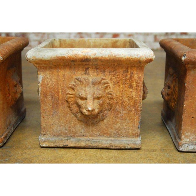 Continental Style Sandstone Planters with Lions Head Motif - Image 4 of 10