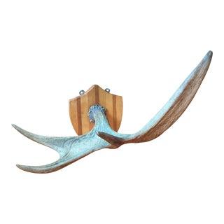Plaque Mounted Elk Horn