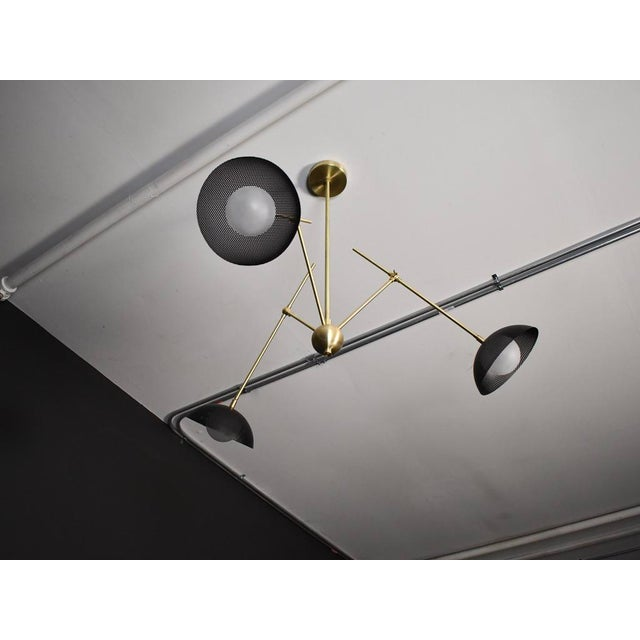 Insetto Articulating Chandelier in Enameled Mesh & Brass by Blueprint Lighting For Sale In New York - Image 6 of 9