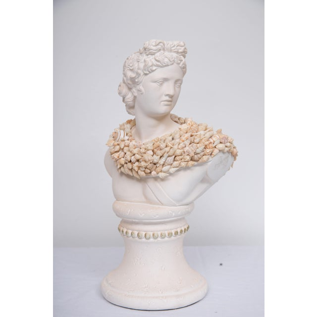 White Shell Encrusted Composition Bust For Sale - Image 8 of 8