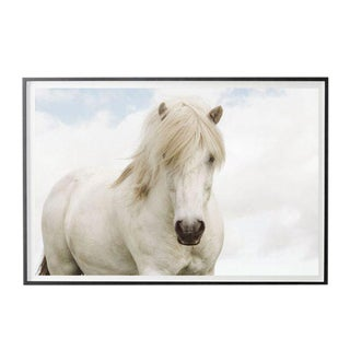 """""""White on White"""" Unframed Photographic Print For Sale"""