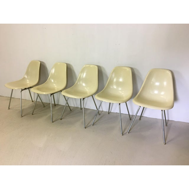 Mid-Century Modern Five Fiberglass Eames Shell Chairs for Herman Miller For Sale - Image 3 of 8