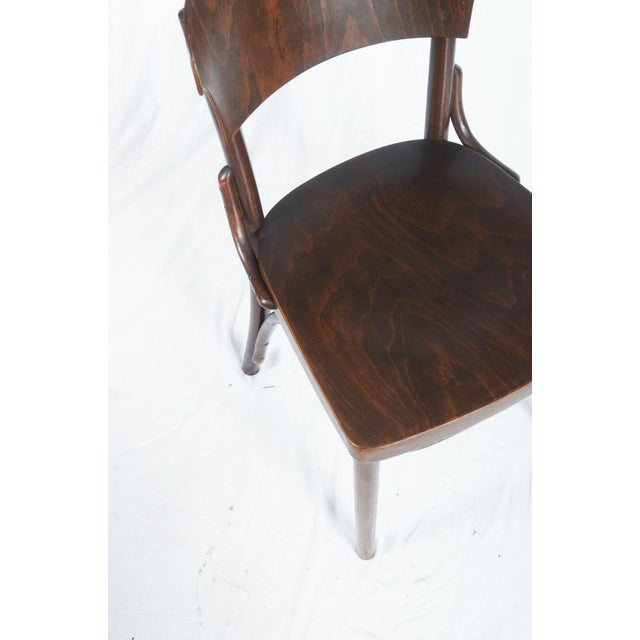 Mid-Century Modern Bentwood Chairs by Thonet, 1930s - Set of 4 For Sale - Image 3 of 9
