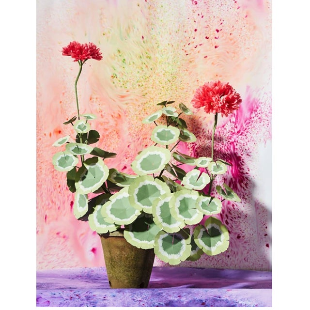 Paper geranium plant with hand painted leaves and 2 blossoms in a beautiful aged terra cotta pot. Pictured here in salmon...