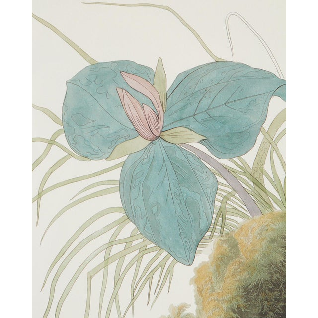 John James Audubon Audubon Ruffed Groüse Plate #41 Havell Edition For Sale - Image 4 of 12