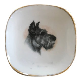 Vintage French Scottish Terrier Dog Catchall For Sale