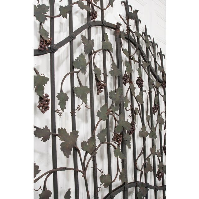 "Pair of French Early 20th Century Painted Wrought-Iron ""Grapevine"" Gates For Sale - Image 12 of 13"