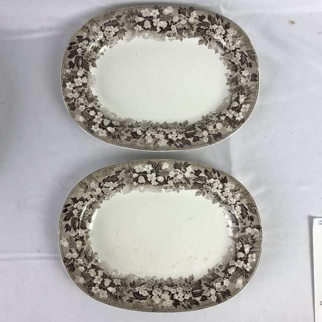 Ceramic 19th C. Wedgwood Platters, Pair For Sale - Image 7 of 7