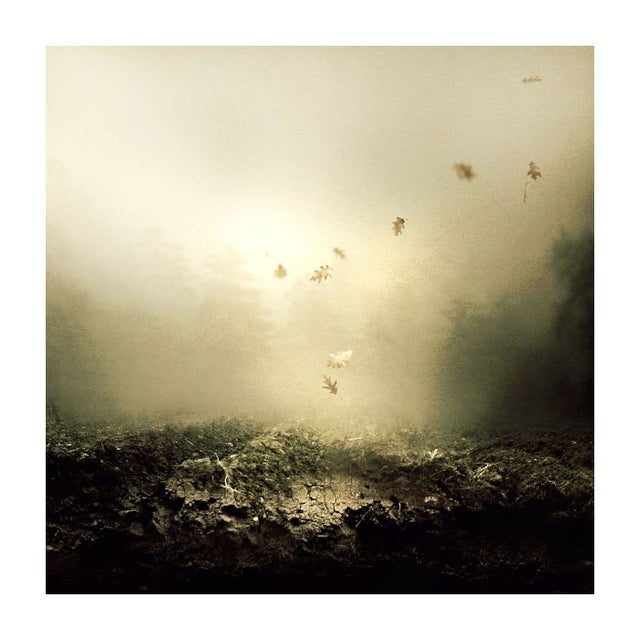 "Martin Stranka ""And I Keep Falling"" Floating Print - Image 1 of 2"