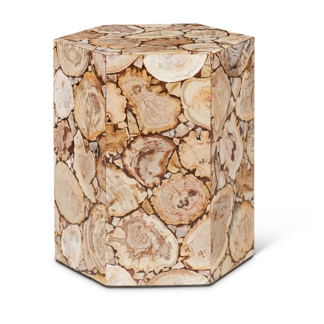 Hexagon Petrified Wood Stool, Natural Light For Sale In Philadelphia - Image 6 of 6