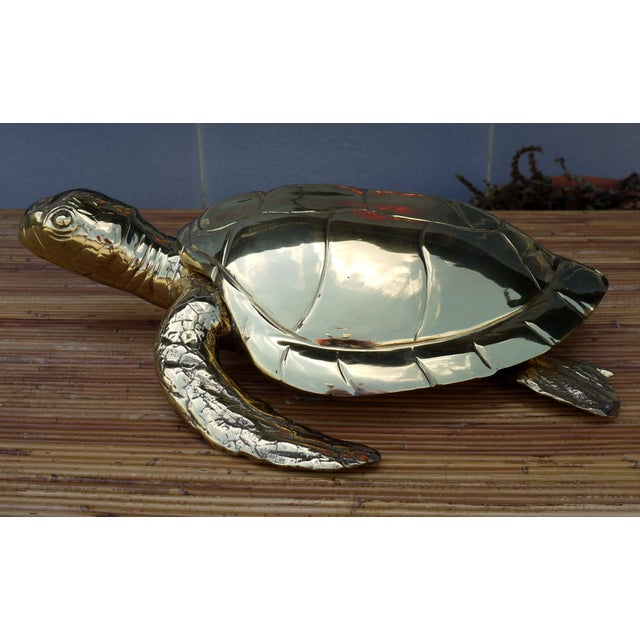 Amazing large scale high polished brass sea turtle box. Great design to it. Great scale for use on a coffee table or...