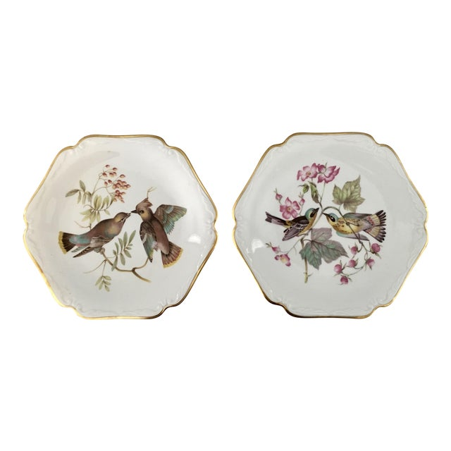 German Floral Bird Plates - a Pair For Sale