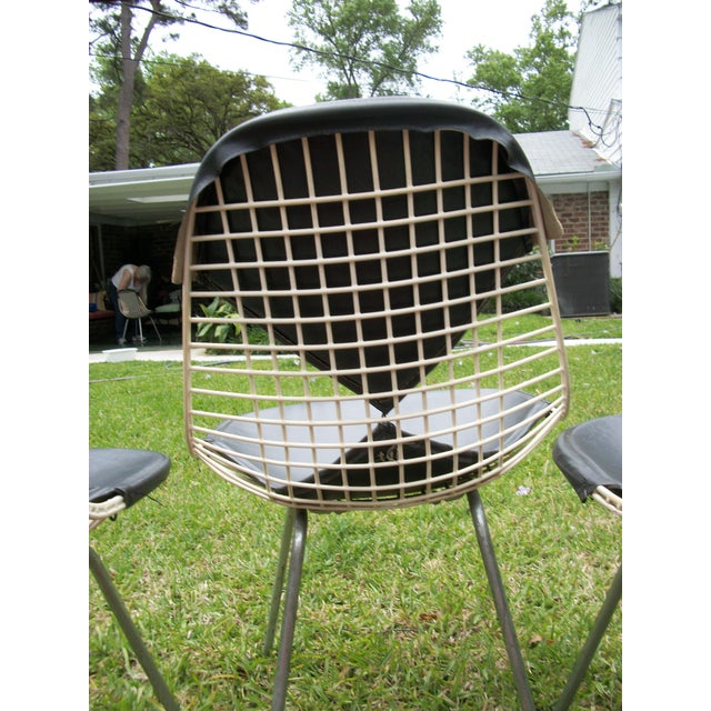 Herman Miller Mid-Century Modern Eames for Herman Miller Bikini Wire Chairs - Set of 6 For Sale - Image 4 of 11