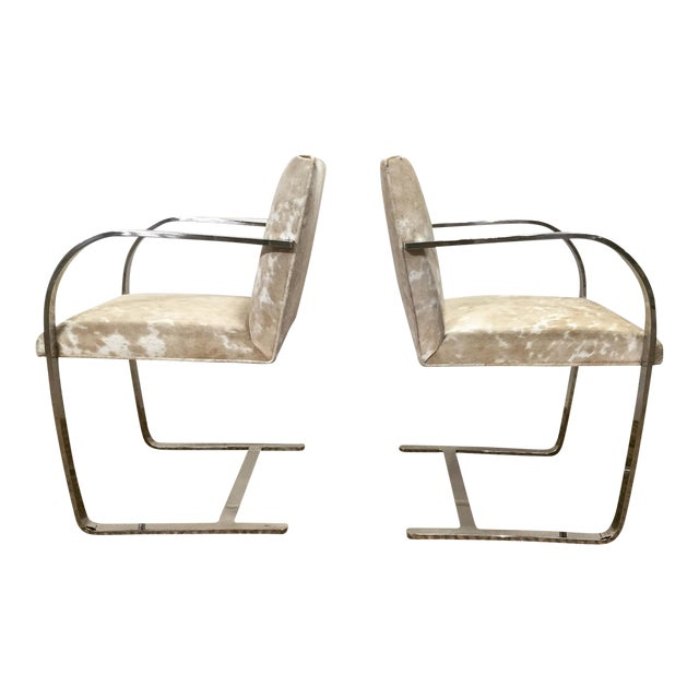 Mid-Century Modern Forsyth One of a Kind Mies Van Der Rohe Brno Chairs for Knoll in Brazilian Cowhide - Pair For Sale - Image 3 of 6