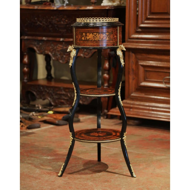 Mid 19th Century 19th Century, French Napoleon III Inlay Rosewood Plant Stand With Brass Mounts For Sale - Image 5 of 9