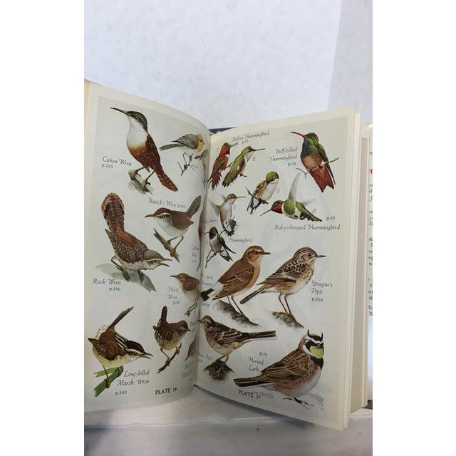 Vintage Ornithology Books - Set of 3 - Image 9 of 9