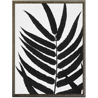 Black Cropped Leaves in Silver & Black Shadowbox - 19.25ʺ x 25.25ʺ For Sale