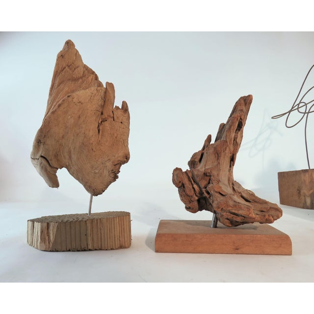 Collection of Abstract Driftwood Sculptures, Gloucester, Ma, Circa 1960s-1970s - Set of 9 For Sale In Boston - Image 6 of 13